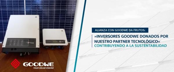 n2-alianza-goodwe-600x250