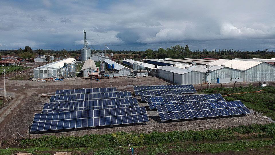 proyecto-fotovoltaico-avicola-san-carlos-01
